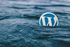 7 UX Principles for Creating an Interactive WordPress Website