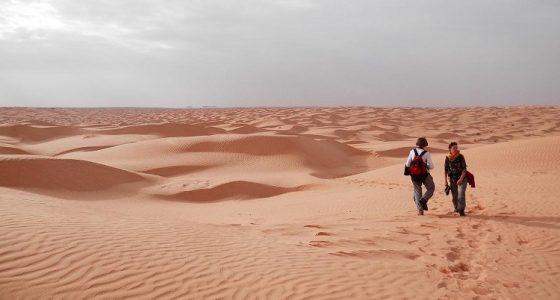 30 Interesting Facts about Sahara Desert